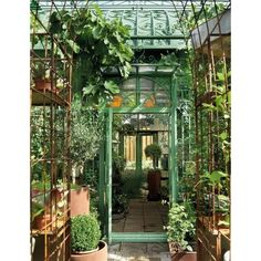 Potential Aspects of my Future Home / I want a greenhouse so badly.... ❤ liked on Polyvore