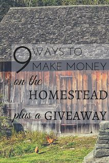 9 Ways to Make Money On The Homestead + A Giveaway