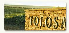 Tolosa winery.......amazing place to stop in the coastal hills of San Luis Obispo, CA