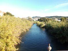 El río Segura a su paso por Cieza. Al fondo se aprecia la Sierra del Oro.
