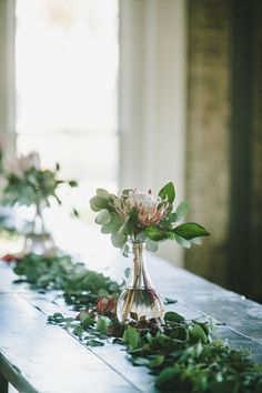 King Protea centerpiece and eucalyptus garland // Nashville Wedding Florist Protea Wedding, Flower Bouquet Wedding, Floral Wedding, Protea Centerpiece, Flower Centerpieces, Centrepieces, Centerpiece Ideas, Wedding Table Centerpieces, Wedding Decorations