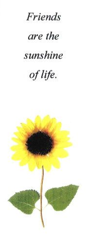 Sunflowers - Friendship quote - on a pressed flower bookmark