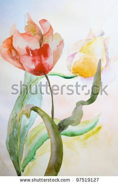 Watercolor illustration of Beautiful tulips flowers - stock photo