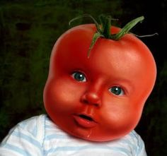 """Cap8.p28. """" Miguel estaba de color rojo, colorado como un tomate."""" Esto es un ejemplo de literal de la frase para la figurativa es un hombre que sea sonrojo."""