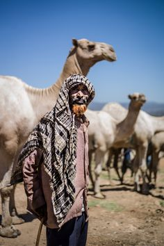 Trading camels and salt in Ethiopia: Adrian Guerin's Instagram snapshots