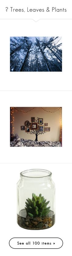 """""""♥ Trees, Leaves & Plants"""" by pantherinae on Polyvore featuring pictures, backgrounds, photos, blue, pics, fillers, scenery, bedrooms, rooms and quotes"""