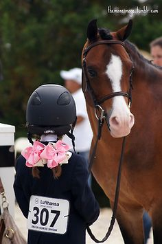 Show bows and super cute ponies