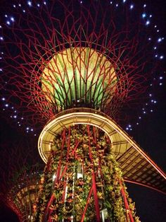 Super Tree @ Gardens by the Bay, Singapore