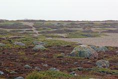 Jurmo April 24th Archipelago, Islands, Mountains, Places, Nature, Photos, Travel, Naturaleza, Viajes