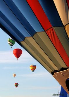 The 2010 Albuquerque International Balloon Fiesta. Photo by...Shelley Stanton©