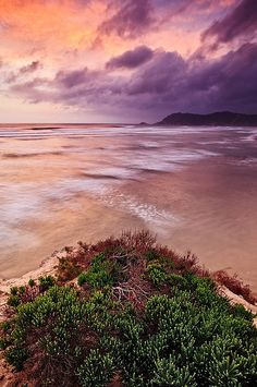 Hahnemuhle PHOTO RAG Fine Art Paper (other products available) - An afterglow illuminates Sedgefield beach with a soft, warm glow. - Image supplied by Fine Art Storehouse - Fine Art Print on Paper made in the UK Travel Photographer, Historical Sites, Ciel, Photo Mugs, Beautiful Places, Beautiful Scenery, South Africa, Fine Art Prints, Poster Prints