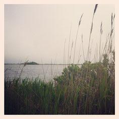 Pond view (Taken with Instagram at Ninigret Pond)