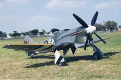 Hawker Tempest Air Force Aircraft, Ww2 Aircraft, Fighter Aircraft, Military Aircraft, Air Fighter, Fighter Jets, Hawker Tempest, Hawker Typhoon, Airplane Fighter