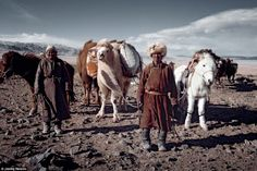 The Tsaatan (reindeer people) of northern Mongolia are a nomadic tribe who depend on reindeer for nearly all aspects of their survival.  Inhabiting the remotest subarctic taiga, where winter temperatures can drop to minus 50°C, the Tsaatan are Mongolia's last surviving reindeer herders