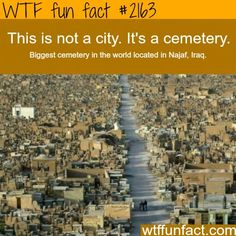 ( It's a city of the dead! )
