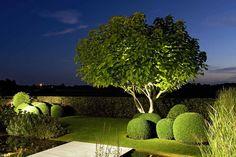 Home - Mein Traumgarten Boxwood Landscaping, Modern Landscaping, Outdoor Landscaping, Pool Water Features, Minimalist Garden, Classic Garden, Home Vegetable Garden, Garden Architecture, Garden Landscape Design