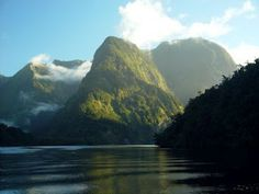 the Lord of the Rings side of New Zealand