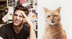 誰だこれ作ったの!(笑)イケメンと猫の比較画像が楽しすぎてヤバい【17選】 | COROBUZZ
