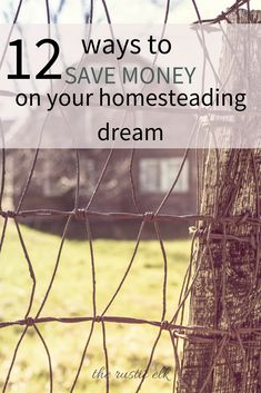 Homesteading and building infrastructure can be so expensive! But it doesn't have to be. If you're creative and frugal enough, you can save a lot of money so you can get started sooner! Here are 12 ways to save money on your homestead dreams! #homesteading #frugal