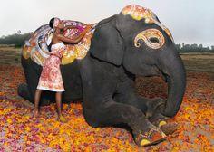 Hermes Campaign 2008 - Photographer Thierry Le Goues - Model Lakshmi Menon