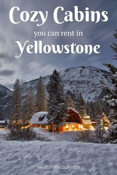 12 Dreamy Yellowstone Cabins You Can Rent for your Next Vacation 11 Dreamy cabins you should rent in Yellowstone for your next vacation. When you visit Yellowstone make sure you stay at a cozy cabin in the woods. Yellowstone Cabins, Yellowstone Vacation, Visit Yellowstone, Yellowstone Winter, Wyoming Vacation, Tennessee Vacation, Vacation Trips, Dream Vacations, Vacation Ideas