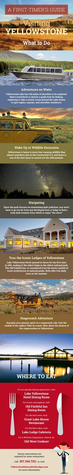 A First Timer's Guide to Visiting Yellowstone: What to Do and Where to Eat