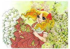 candy candy anime manga - Buscar con Google
