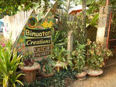 Binuatan Creations Philippines, Romance, Christmas Ornaments, Holiday Decor, Plants, Travel, Romance Film, Romances, Viajes