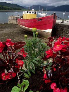 Old Boat at Port Bannatyne by James Bullis-King
