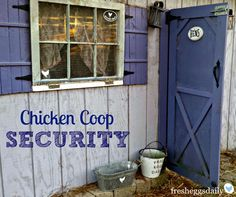 Chicken Coop Security Measures | Fresh Eggs Daily®