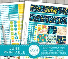June Planner Stickers, Erin Condren June Stickers, ECLP June Monthly View, June Planner Kit, Monthly Printable Kit, Summer Planner, MV125