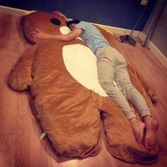 Who the heck wouldn't want this giant teddy bear bed....thing?!?