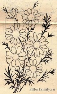 садовые ромашки - бесплатный узор для вышивки