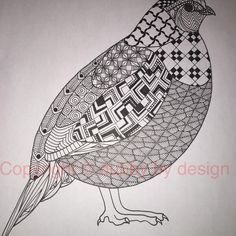 Quail template, thx Ben! #dubbybydesign #zentangle #zentangleinspiredart #benkwok #ornationcreation #inkdrawing #doodle #zendoodle