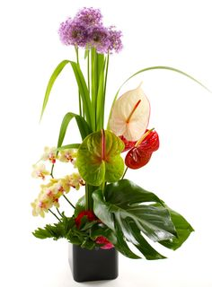 Send flowers online Finland on various occasions like Birthday,Anniversary,Valentine and etc., with same day flowers delivery in Finland Best Online Flowers, Online Flower Shop, Online Flower Delivery, Flower Delivery Service, Order Flowers Online, Flowers Today, Cut Flowers, Fresh Flowers, International Flower Delivery