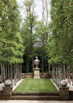 symmetry in the garden - TheFullerView