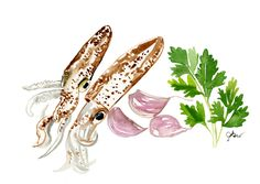Ingredients by Jessie Kanelos Weiner. Watercolor food illustration. Calamari. Gastronomy. American in Paris illustration. thefrancofly.com. Squid. Flat leaf parsley. Purple garlic. French food, Etsy seller, https://www.etsy.com/listing/573602868/mise-en-place?ref=shop_home_active_14