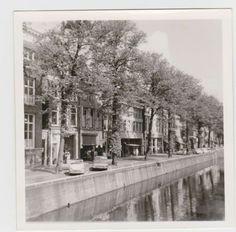 De Nieuwestad, voorjaar 1968 leeuwarden