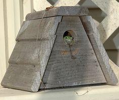 unique+bird+houses | Unique and Creative Birdhouse Designs unique Birdhouses (5 ...