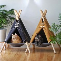 Your cat is probably super duper cute but wait until you see them in the Adventure Tent, a pawsome cat bed / cat hammock / cat tent in a modern design. Cat Teepee, Cat Tent, Diy Cat Hammock, Diy Cat Bed, Hammock Ideas, Hammock Tent, Cat House Diy, Cat Room, Animal Projects