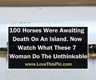 100 Horses Were Awaiting Death On An Island. Now Watch What These 7 Woman Do The Unthinkable