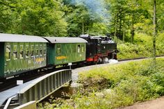 Weißeritztalbahn, the free state of Saxony in Germany. Freital-Hainsberg / Dippoldiswalde (Kurort Kipsdorf). Oldest public narrow gauge railway in Germany.  (by: harry eppink)