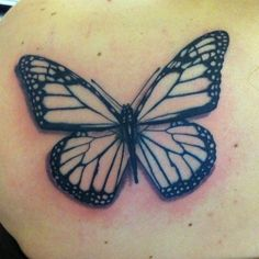 guen douglas - butterfly