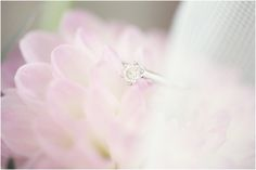 Beautiful shot of our brides ring