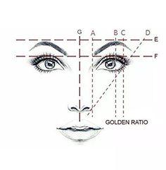 measuring brows