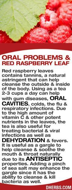 Red raspberry leaves contains tannins, a natural astringent that can help cleanse the outside & inside of the body. Using as a tea 2-3 cups a day can help with gum diseases, oral cavities, colds, the flu & respiratory infections. Due to the high amount of vitamin C & other potent nutrients in the leaves, it is also useful for treating bacterial & viral infections, dehydration & fevers. As a gargle, it helps soothe the mouth & throat naturally due to its antiseptic properties. #dherbs #...