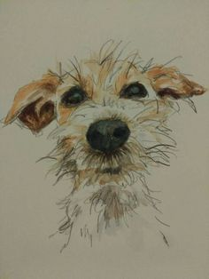 Little pooch- So expressive. I wish the artist had been listed.