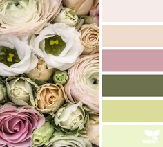 Color Bloom - http://design-seeds.com/home/entry/color-bloom