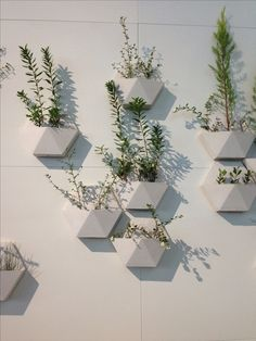 17 Most Creative Ways For Creating Vertical Planter Display In The Home Beton Design, Concrete Design, Plant Wall, Plant Decor, Plant Pots, Concrete Planters, Wall Planters, Concrete Cement, Cement Tiles