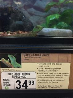 Hilarious animal descriptions at pet store